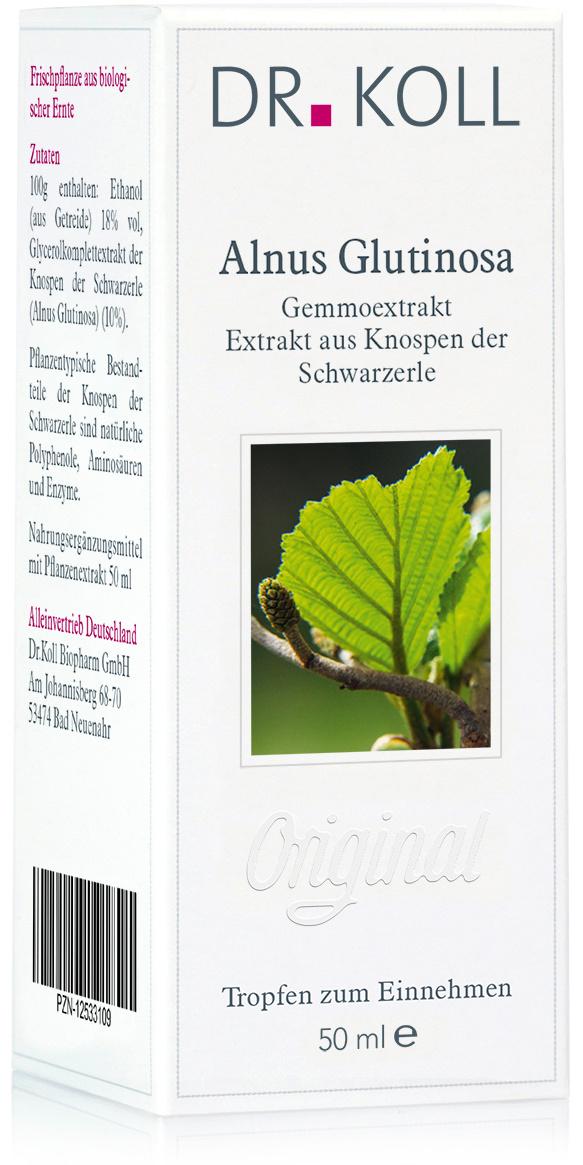Dr. Koll Gemmoextrakt: Schwarzerle – Alnus glutinosa