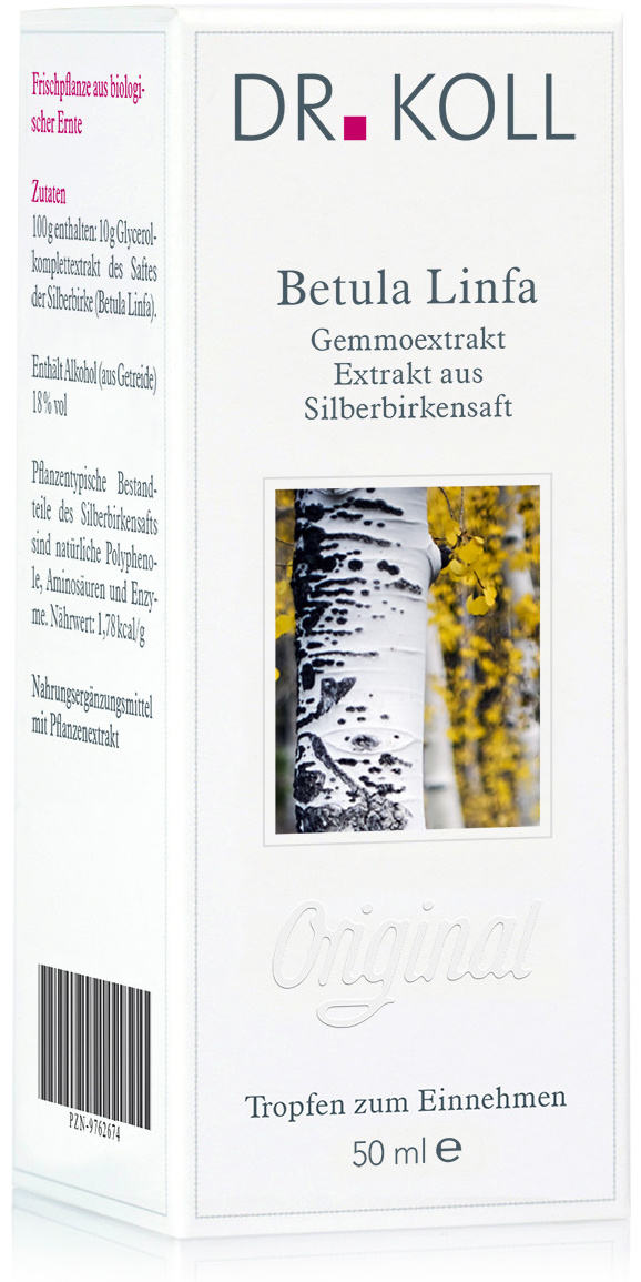 Dr. Koll Gemmoextrakt: Betula alba - Silberbirke