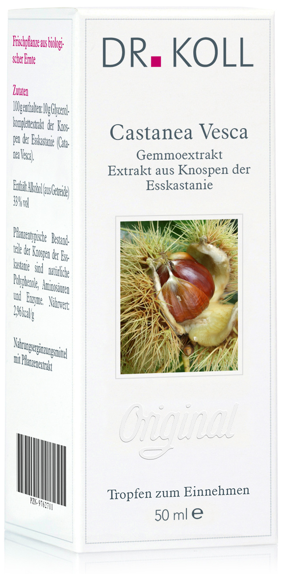 Dr. Koll Gemmoextrakt: Castanea vesca - Esskastanie
