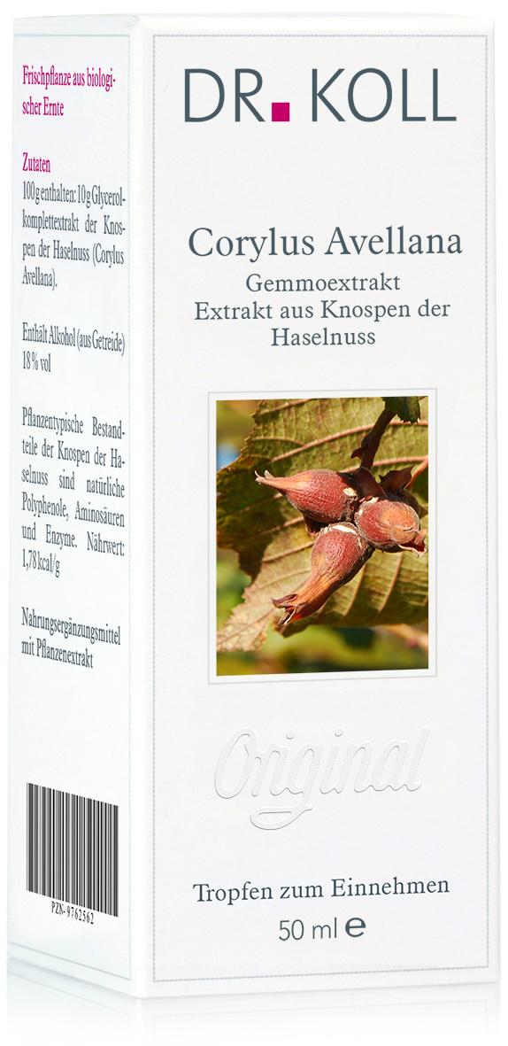 Dr. Koll Gemmoextrakt: Coryllus avellana - Haselnuss