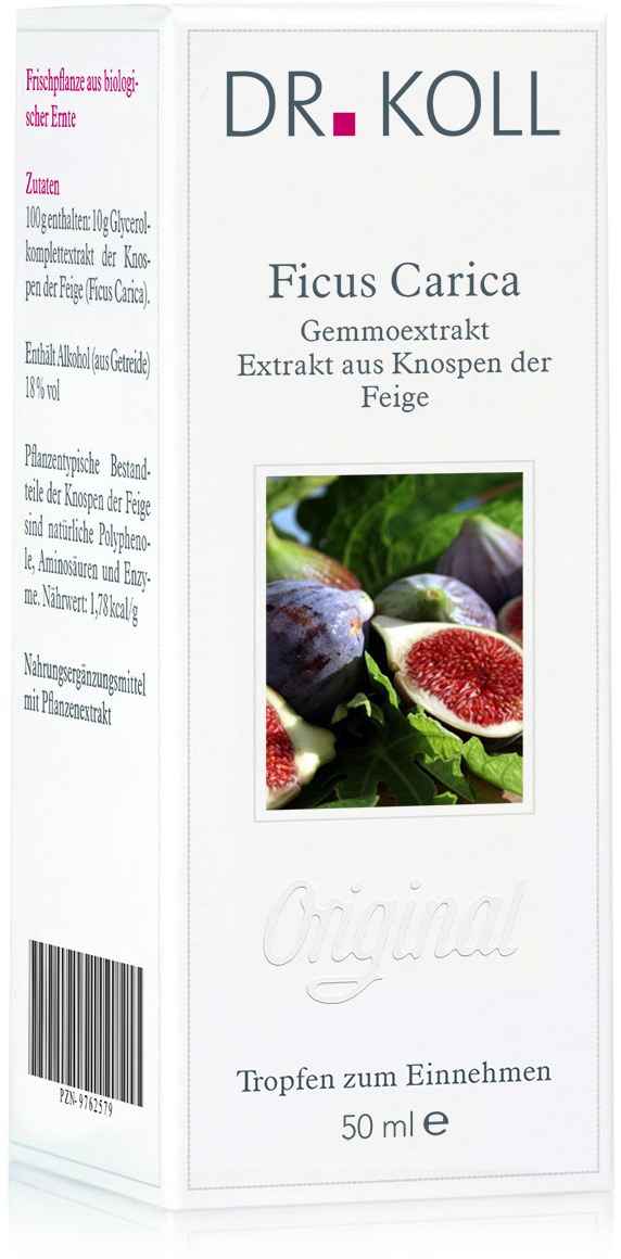 Dr. Koll Gemmoextrakt: Ficus carica - Feige