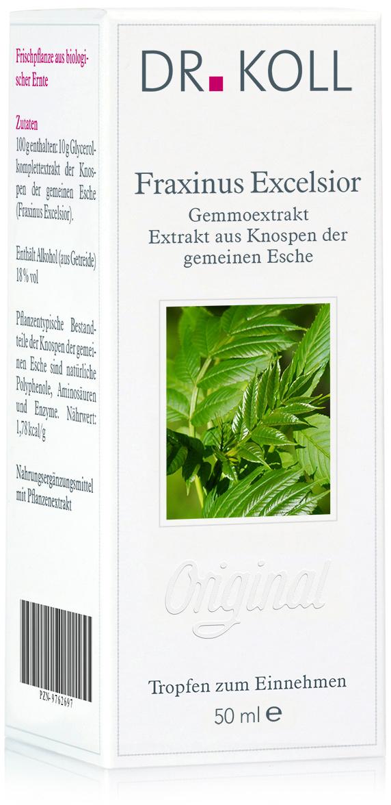 Dr. Koll Gemmoextrakt: Fraxinus excelsior - Esche