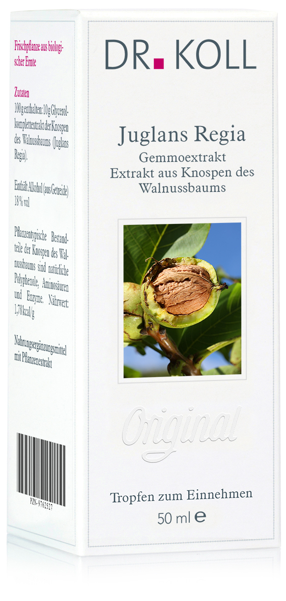 Dr. Koll Gemmoextrakt: Juglans regia - Walnussbaum