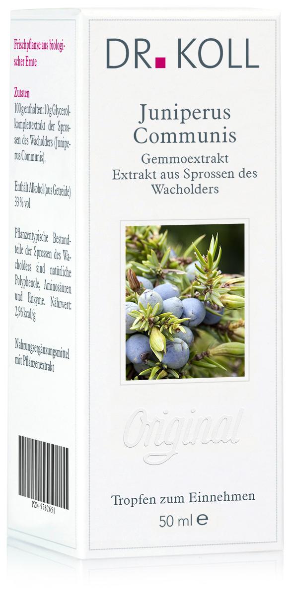 Dr. Koll Gemmoextrakt: Juniperus communis - Wacholder