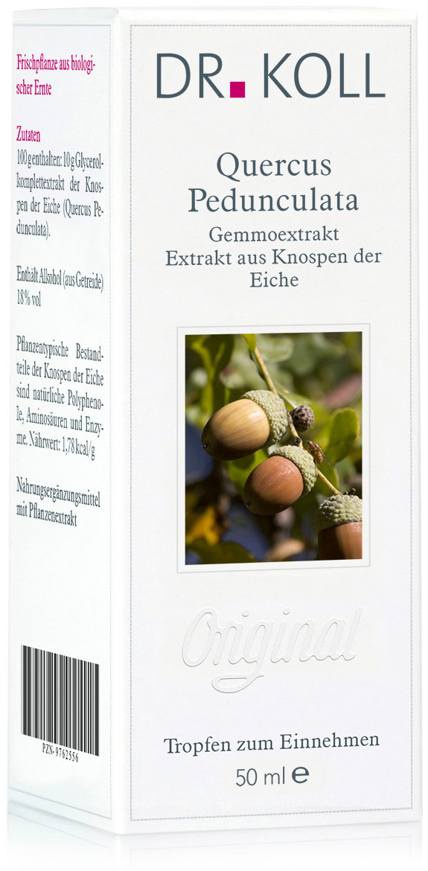 Dr. Koll Gemmoextrakt: Quercus pedunculata - Eiche
