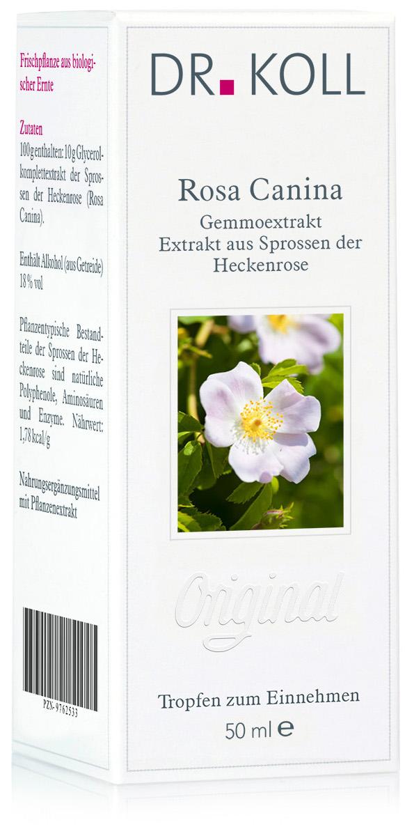 Dr. Koll Gemmoextrakt: Rosa canina - Heckenrose
