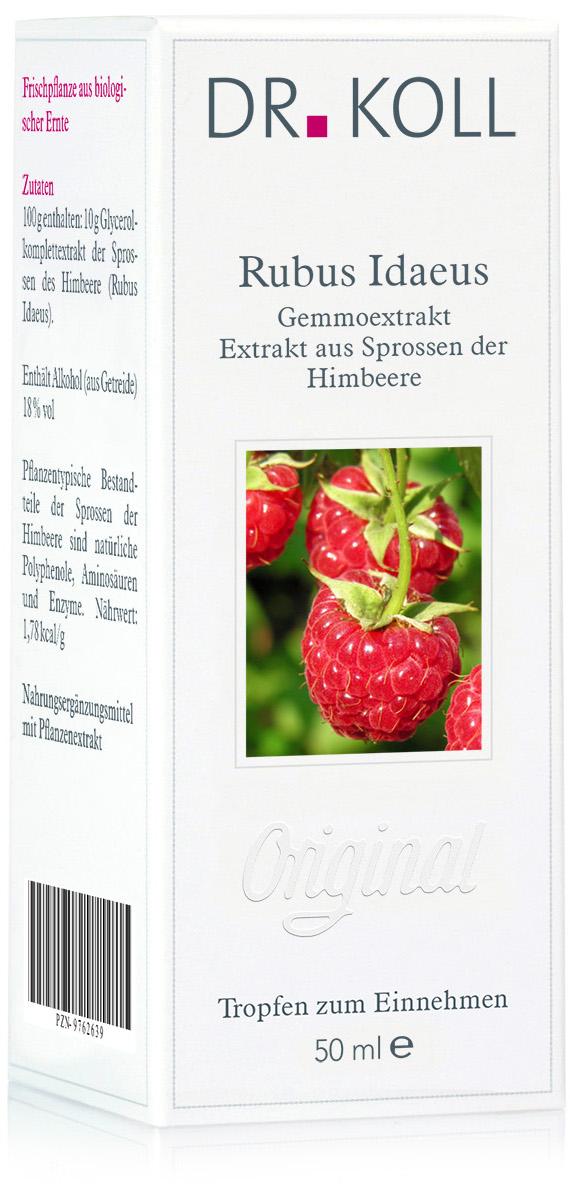 Gemmoextrakt: Rubus idaeus - Himbeere