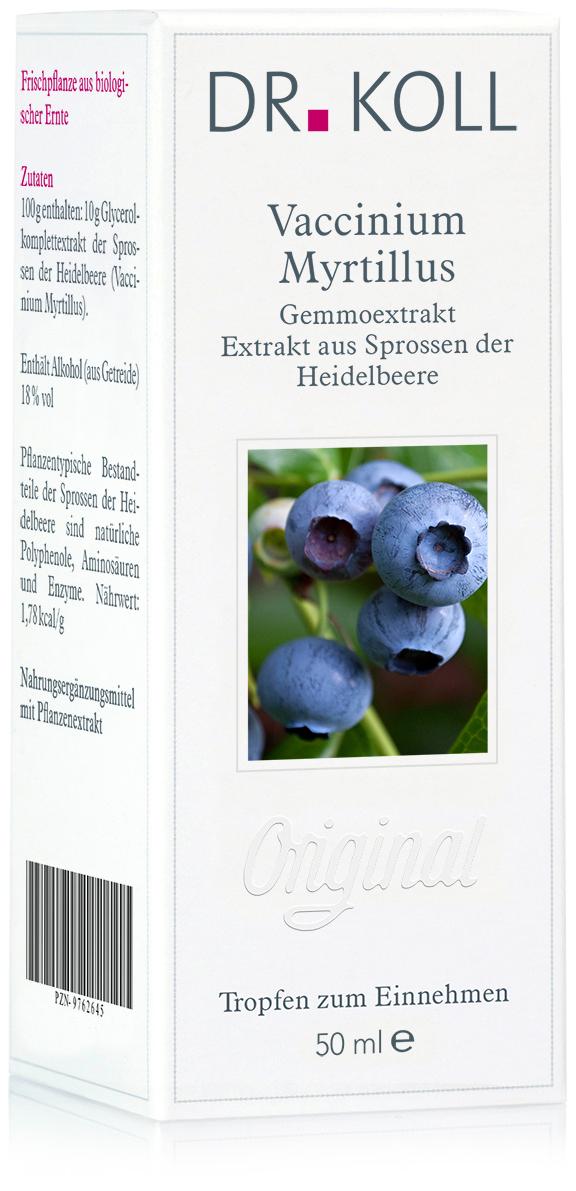 Gemmoextrakt: Vaccinium myrtillus - Heidelbeere