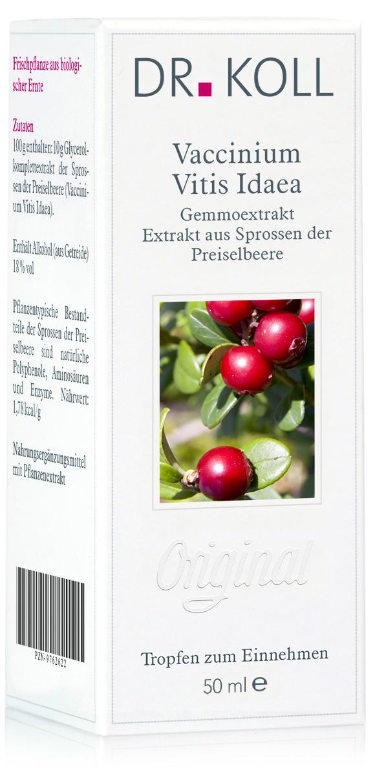 Gemmoextrakt: Vaccinium vitis idaea - Preiselbeere