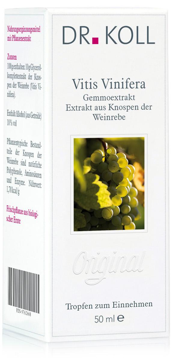 Dr. Koll Gemmoextrakt: Vitis vinifera - Weinrebe