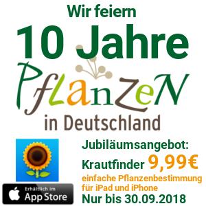 KRAUTFINDER® - Pflanzenbestimmung schnell & einfach für iPad und iPhone!