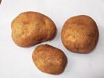 """Kartoffel - Solanum tuberosum; Bildquelle: <a href=""""https://www.pflanzen-deutschland.de/quellen.php?bild_quelle=Wikipedia User Yercaud-elango"""">Wikipedia User Yercaud-elango</a>; Bildlizenz: <a href=""""https://creativecommons.org/licenses/by/4.0/deed.de"""" target=_blank title=""""Namensnennung 4.0 International (CC BY 4.0)"""">CC BY 4.0</a>; <br>Wiki Commons Bildbeschreibung: <a href=""""https://commons.wikimedia.org/wiki/File:Solanum_tuberosum-1-yercaud-salem-India.JPG"""" target=_blank title=""""https://commons.wikimedia.org/wiki/File:Solanum_tuberosum-1-yercaud-salem-India.JPG"""">https://commons.wikimedia.org/wiki/File:Solanum_tuberosum-1-yercaud-salem-India.JPG</a>"""