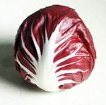 """Chicorée, Radicchio - Cichorium intybus var. foliosum; Bildquelle: <a href=""""https://www.pflanzen-deutschland.de/quellen.php?bild_quelle=""""></a>; Bildlizenz: <a href=""""https://creativecommons.org/licenses/by-sa/3.0/deed.de"""" target=_blank title=""""Namensnennung - Weitergabe unter gleichen Bedingungen 3.0 Unported (CC BY-SA 3.0)"""">CC BY-SA 3.0</a>;"""