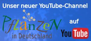 Pflanzen in Deutschland auf YouTube